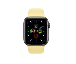 Apple Watch Series 5 回收
